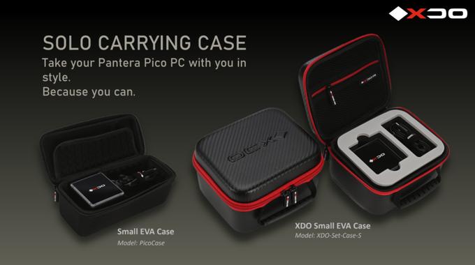 Pantera Cases